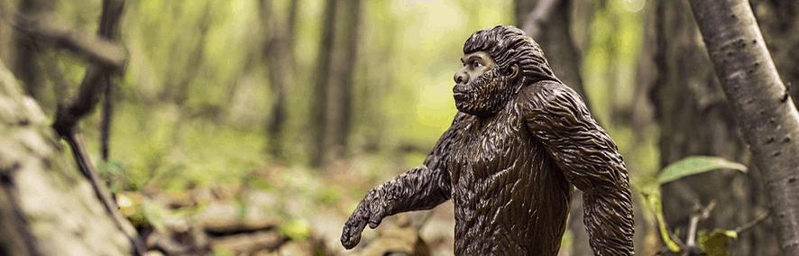 Yeti walking in the woods