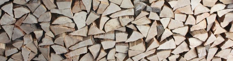 Logs that have been cut with a log splitter.